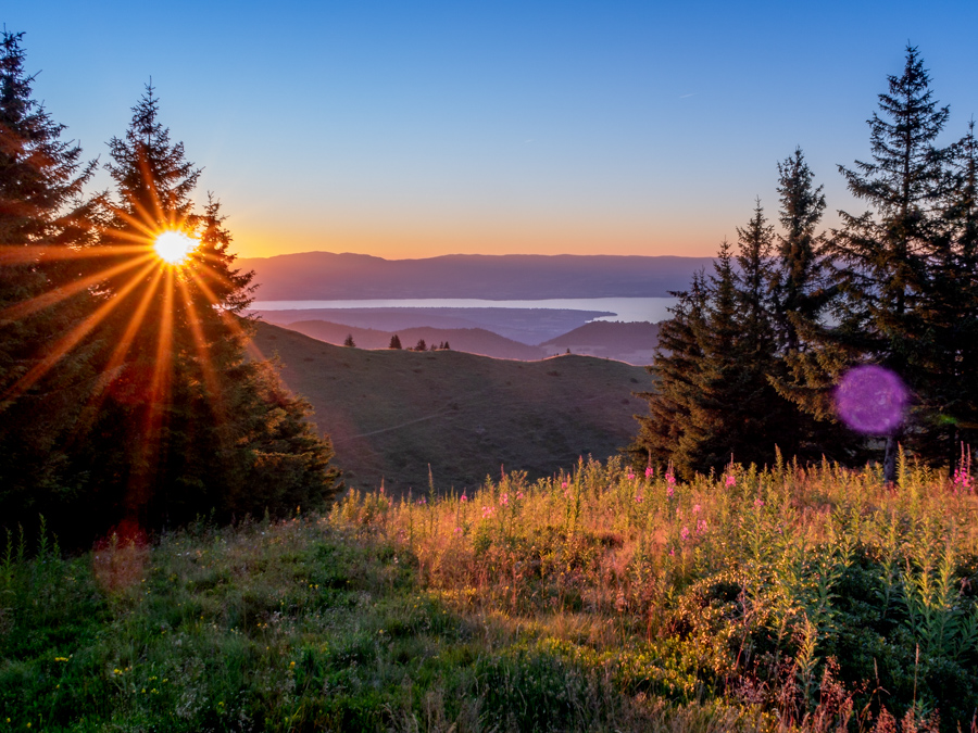 cours-particulier-photo-montpellier-coucher-de-soleil