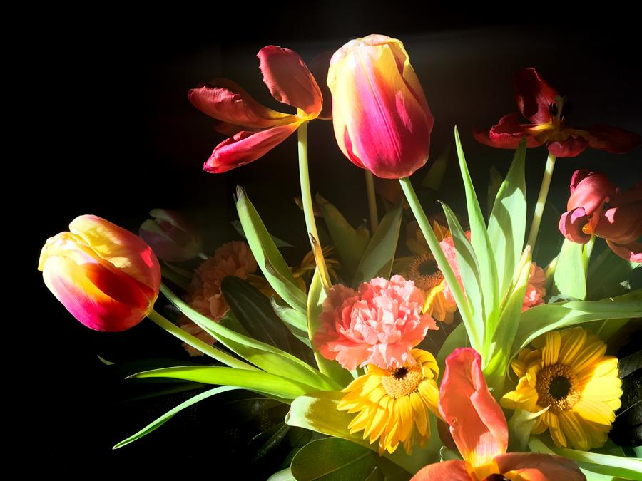 cours-particulier-photographie-montpellier-bouquet-fleurs